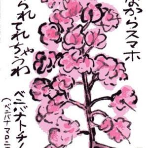 ベニバナトチノキ(ベニバナマロニエ)(絵手紙)