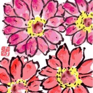百日草(その4)(絵手紙)