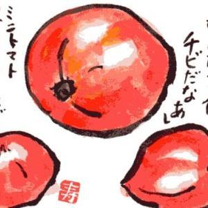 トマト【絵手紙】