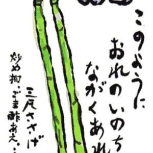 三尺ささげ(絵手紙)