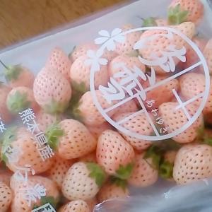 変わったイチゴ。