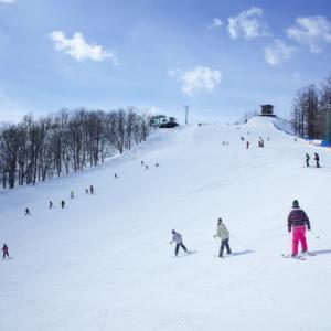 【関東から近い順】子連れスキーにおすすめの関越道沿いスキー場