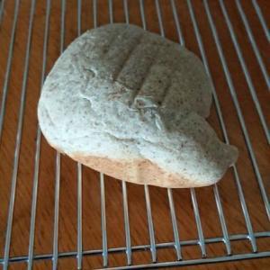 失敗したパンを活用する方法 膨らまなかったパン 全粒粉入り