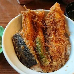 【神奈川 小田原】だるま料理店であなご天丼 海鮮だけじゃない小田原