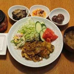 近くて遠い曼殊沙華 カレー生姜焼き 毎日ご飯