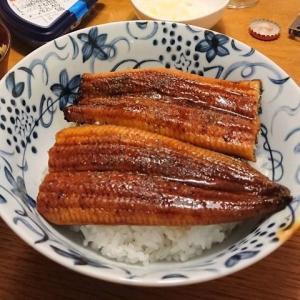 ふるさと納税 疲れた日にあると便利!和歌山県有田市うなぎの蒲焼き