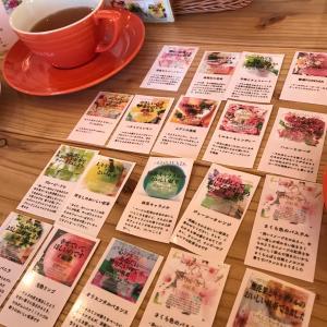 楽しい紅茶専門店