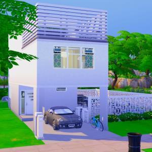 TS4-Tofu House