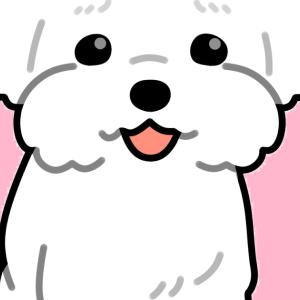 韓国語を勉強したい人はSkyHashiを観ればいいのや♪ 子供もOK♪