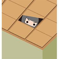 天井裏から謎の音!?
