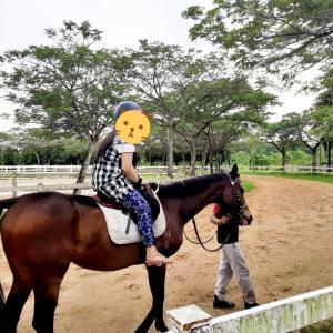 ジョホールバルで乗馬体験