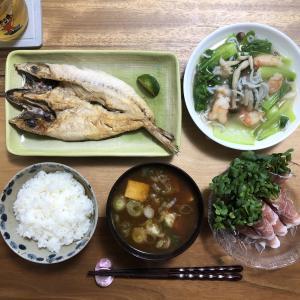 青梗菜の美味しい食べ方!とほっと餡と優しいお味でほっこりごはん