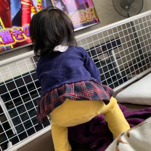 一歳ただいまマイペースに立っちの練習中