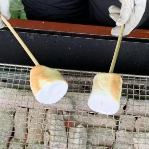 【ソフトキャンディー】焼きマシュマロ