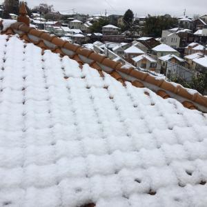3月の雪!!2020年