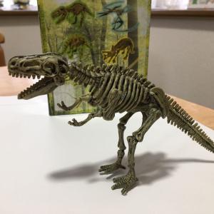 恐竜の化石発掘!!