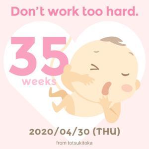 35w0d*臨月まで、あと一週間!!!