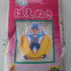 ふるさと納税の無洗米
