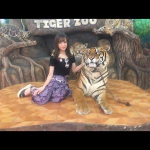 虎やゾウやワニと触れ合いましたっ☺︎✌︎