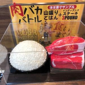 日本最大級の室内キッズパーク メガインディアンズ ステーキハウス 緑白土店 は子供も大人も大満足のお店だった件