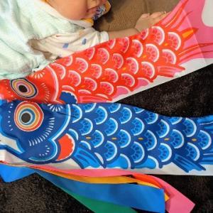 久宝堂の鯉のぼりが届いた!ベランダ用が意外と収納しやすいサイズ。