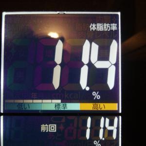 体脂肪率11.4%