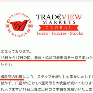 Tradeviewがボーナスとキャッシュバックなしでも人気の理由