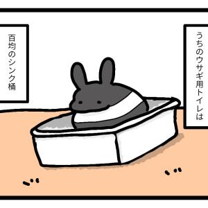 うさぎのトイレ事情