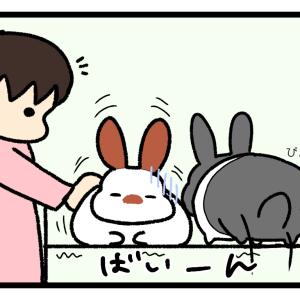 KYU(空気読めないうさぎ)