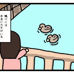 ど田舎から京都へ嫁いで驚いたこと