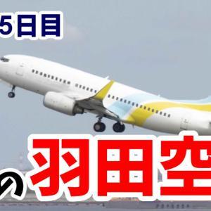 3ヵ月目でやっと羽田空港まで行けました【乗務35日目】