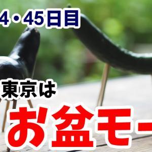 お盆モードの東京 タクシーが少ないから稼ぎやすい!?【乗務44・45日目】