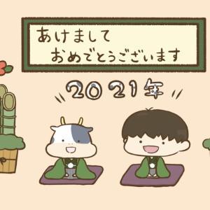 新年あけましておめでとうございます!2021年の目標や抱負、活動を発表します!
