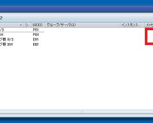 4.SAPシステムを動かす