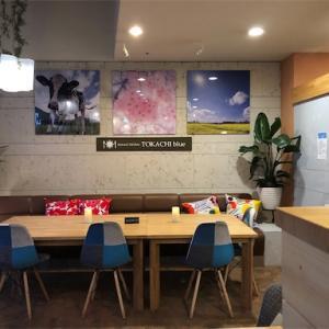 【カフェ】帯広市*Natural Kitchen TOKACHI blue(トカチブルー)*ココナッツミルクのソフトアイス