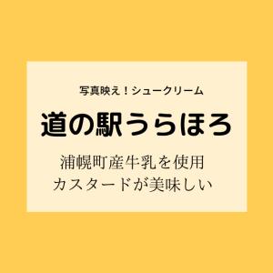 【道の駅うらほろ】たっぷりホイップの映えシュークリーム