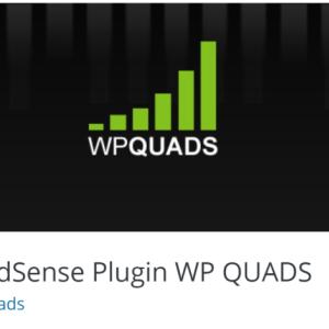 Ads & AdSense Plugin WP QUADSの設定、使い方