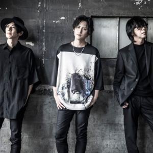 WANDS 全アルバムレビュー【第5期始動】