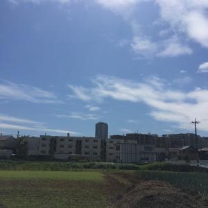 【鉄道沿線歩き旅】Case0-3 こどもの国線編