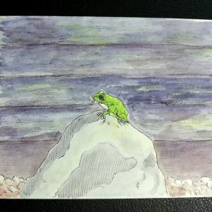 水彩画7枚目「岩の上で佇むカエル」