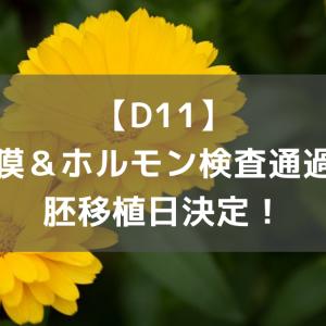 【D11】内膜&ホルモン検査通過と胚移植日決定!