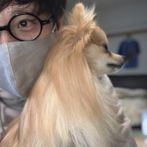 犬とマスクと飼い主と。