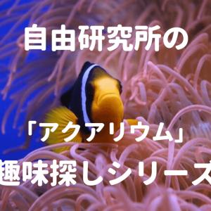 【趣味探し】熱帯魚の飼育【海水アクアリウム】