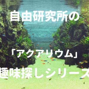 【趣味探し】熱帯魚の飼育【淡水アクアリウム】