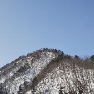 山鳥を探して再び山歩き