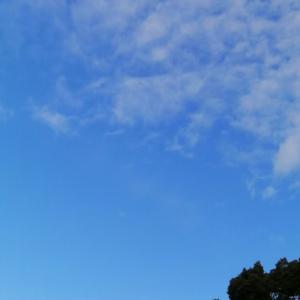 空気の澄んだ冬の朝です。