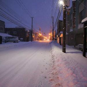 待望の雪!?