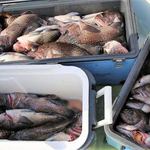 21日ぶりの出漁