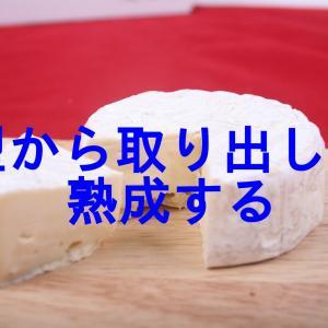 チーズプロフェッショナル試験対策15 チーズ製造第3段階型から取り出して熟成をする①
