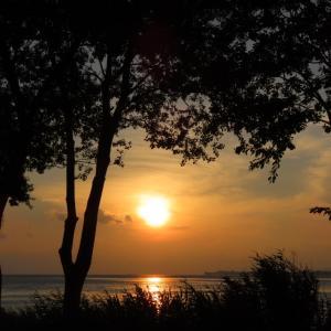 GO TO 近場観光『琵琶湖編』